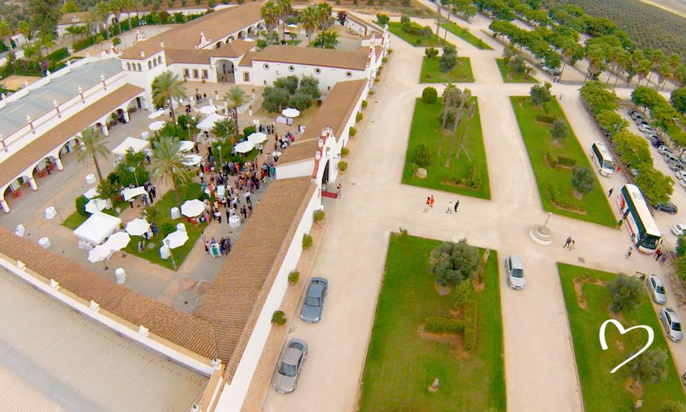 Celebraciones Alianzza - Hacienda La Pintada