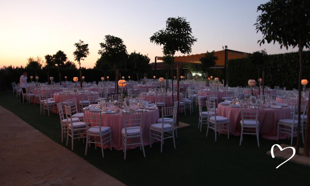 Celebraciones Alianzza - Cerca de Aragon